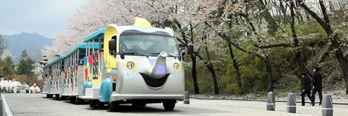 seoul-grand-park-zoo-elephant-train-car