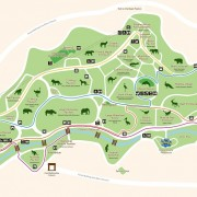 seoul-grand-park-zoo-map-animals