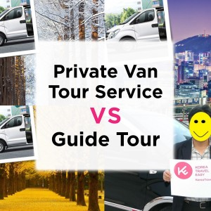 private-van-tour-service-vs-tour-guide-service