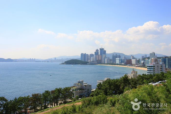 haeundae-beach-view-green