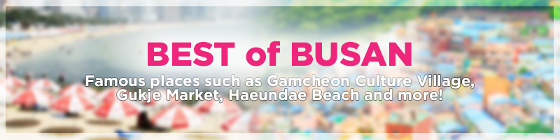 best-of-busan-banner