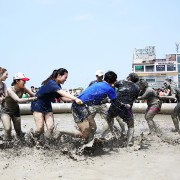 boryeong-korea-mud-festival-fun-people-pulling-in-mud