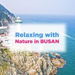 relaxing-with-nature-in-busan-private-car-driver-trip-taejongdae-gwanalli-beach-gukje-market