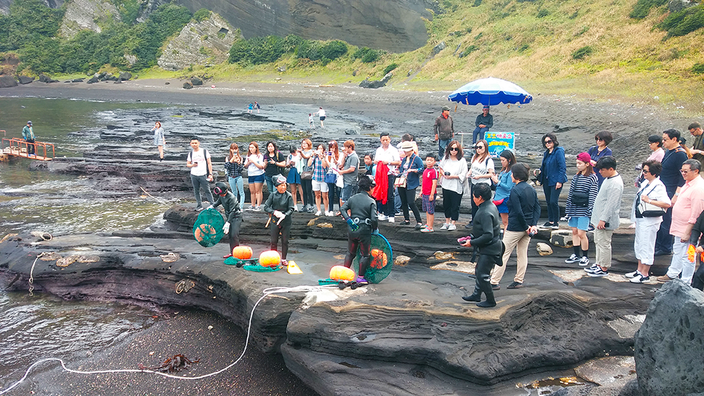 women-diver-show-jeju-island