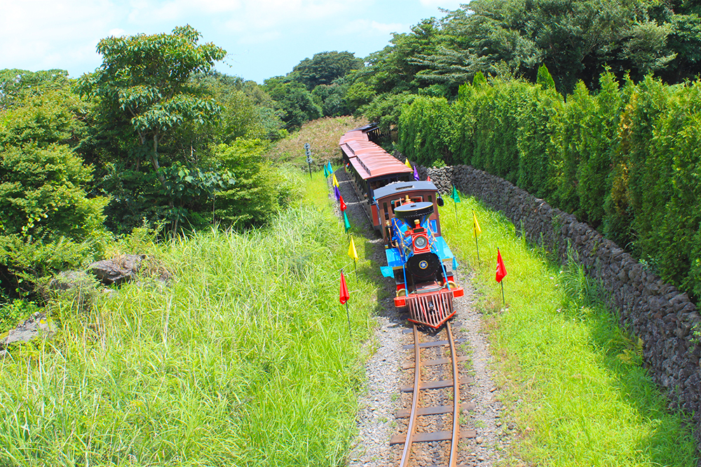 eco-land-train-jeju-island