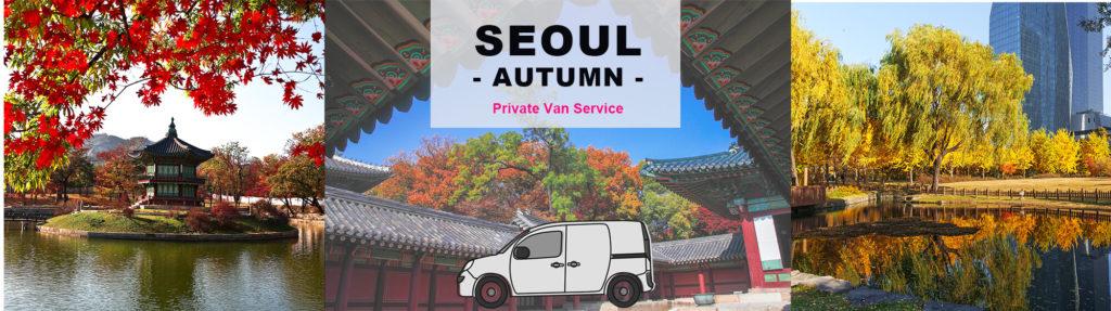 Fall Season 1-Day Private Car And Driver Tour In Seoul | KoreaTravelEasy