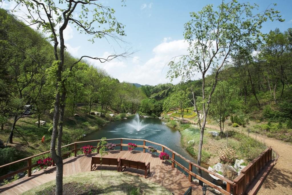 jade-garden-outside-pretty-nature-chuncheon-fountain
