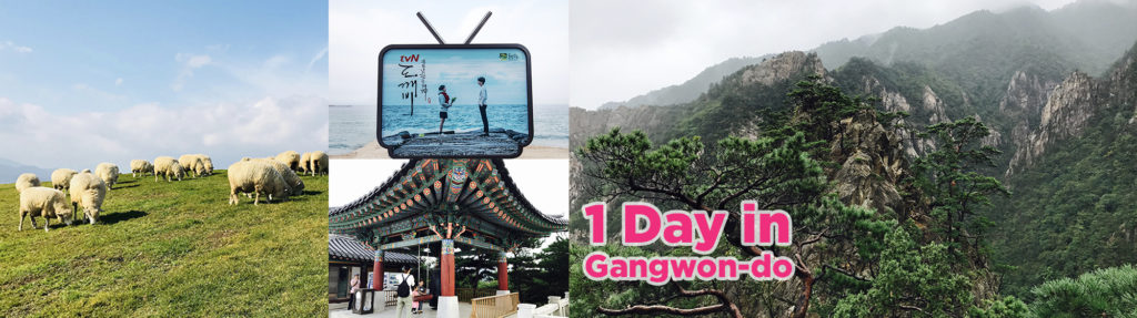 1day Private car and driver to Gangwondo area  from Seoul – Gangneung, Mt. Seorak, Sheep Farm, PyeongChang (Tour guide option) | KoreaTravelEasy