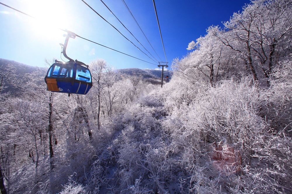 (Winter HOT DEAL) Yongpyong Resort Korean drama Site Gondola Sightseeing,  Snow sled, Ski Package! (Nov 23,2019 ~ Feb 29,2020)