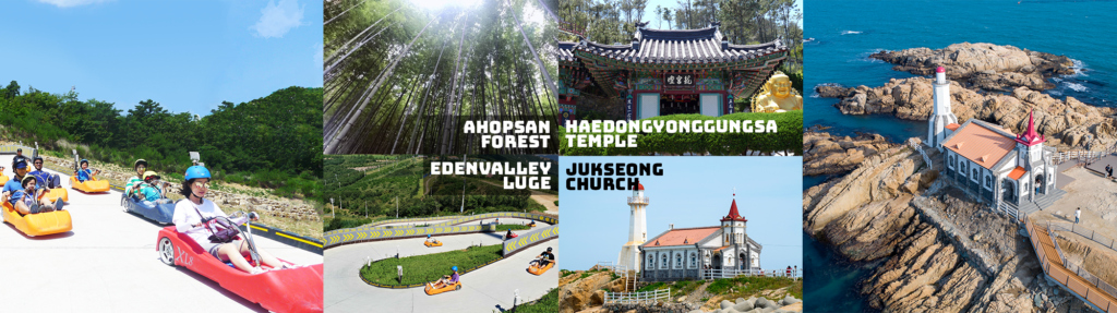 UP TO 11%, Busan Full Day City Tour – Enjoy a Luge Ride, Yonggungsa Temple and more – From Busan (Wed, Fri) | KoreaTravelEasy