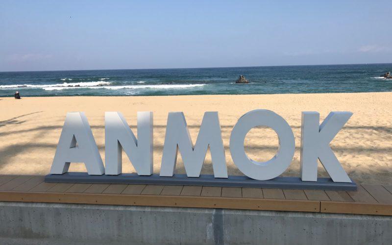 gangneung-anmok-beach-cafe-street