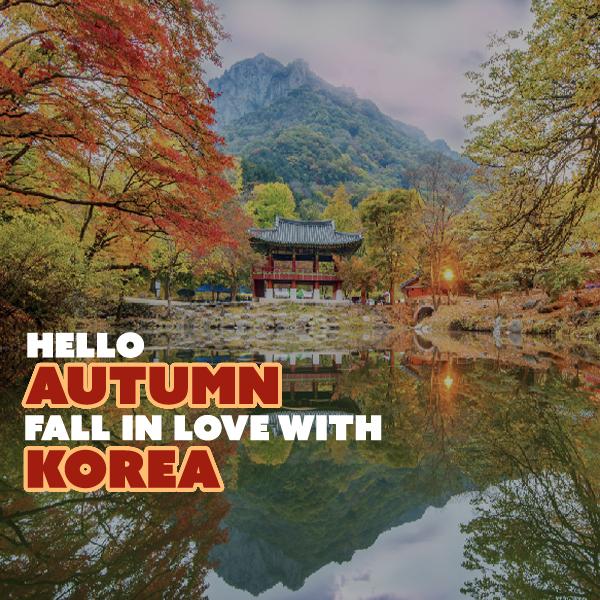 Autumn in korea 2019
