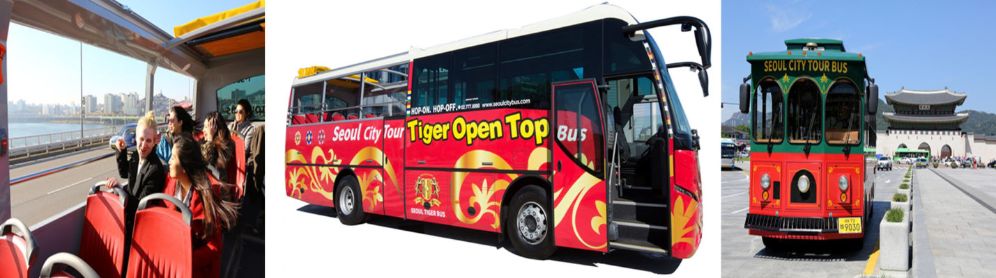 seoul city tour bus tiger bus