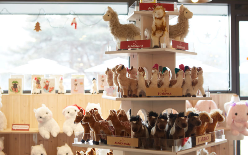 alpaca world souvenir