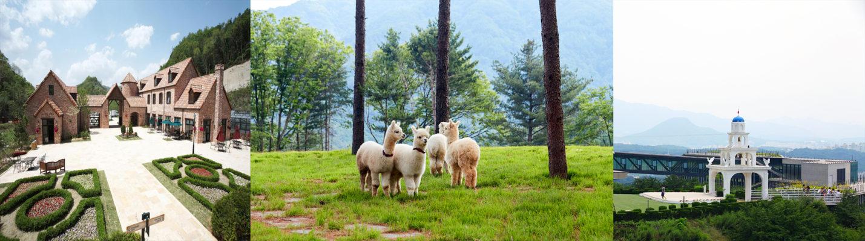 alpaca world jade garden 1day tour