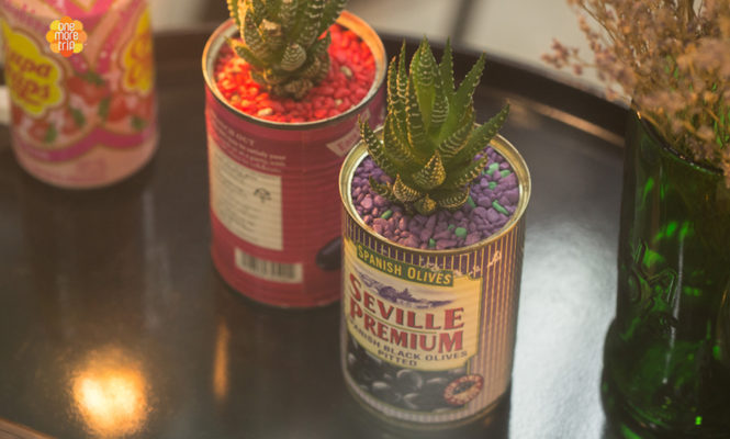upcycling succulent pots