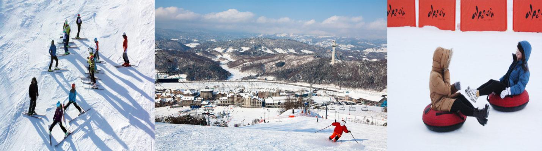 Alpensia ski resort Thumbnail