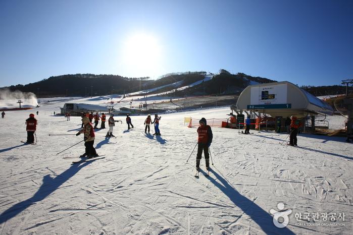 alpensia snow slope