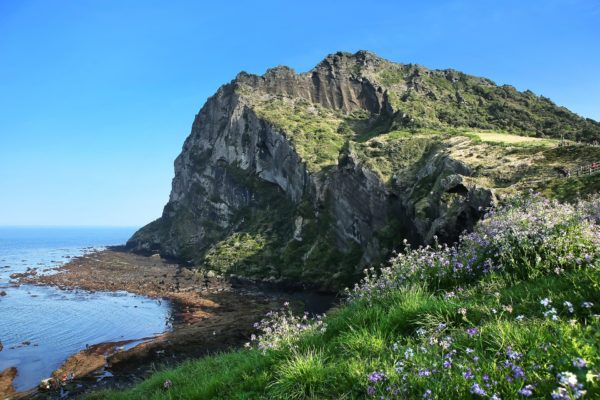 jeju 1day tour package