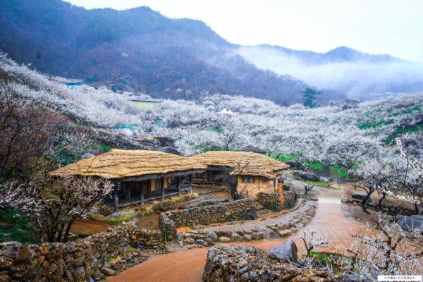 maehwa village panorama