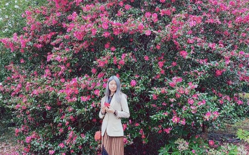West Jeju Camellia Hill