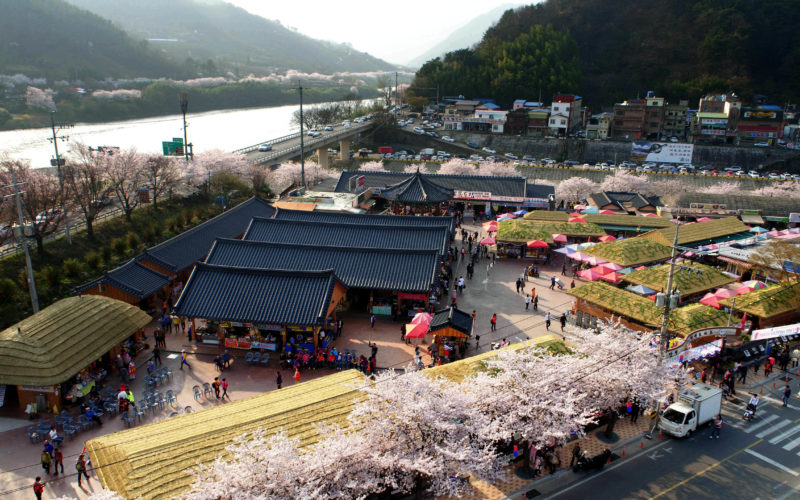 hadong cherry blossom hwagae market