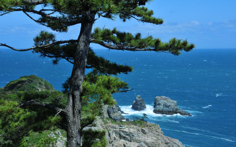 oedo cliff view