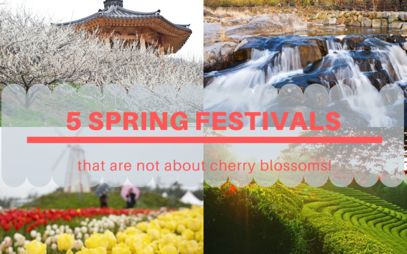 spring festival blog cover with text