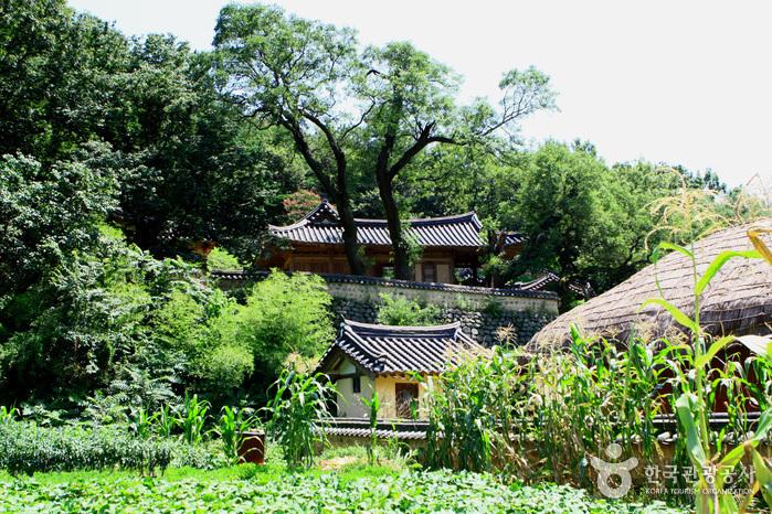 yangdong village surrounding