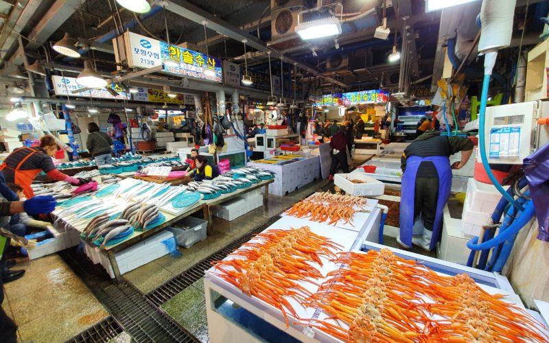 pohang jukdo market crabs