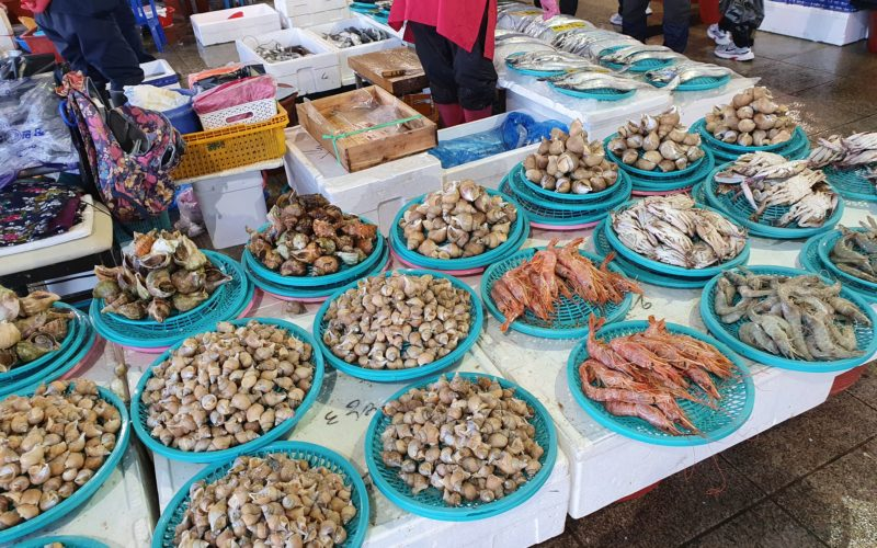 pohang jukdo market seafood