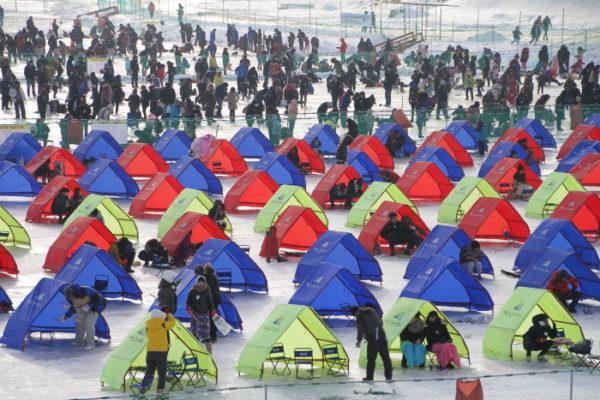pyeongchang trout festival2