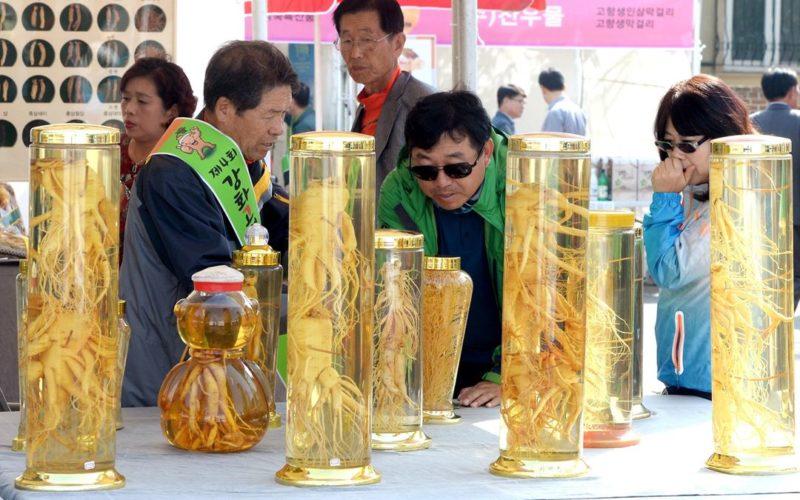 Ganghwa Ginseng Festival5
