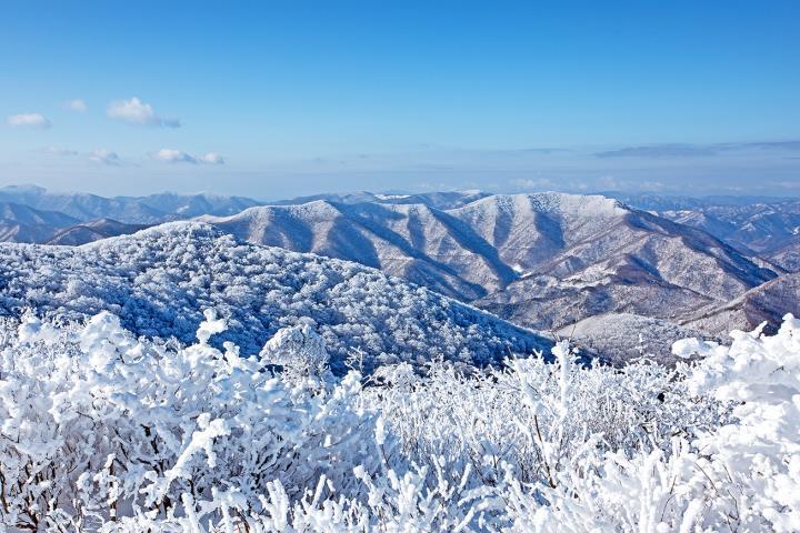 winter view in korea