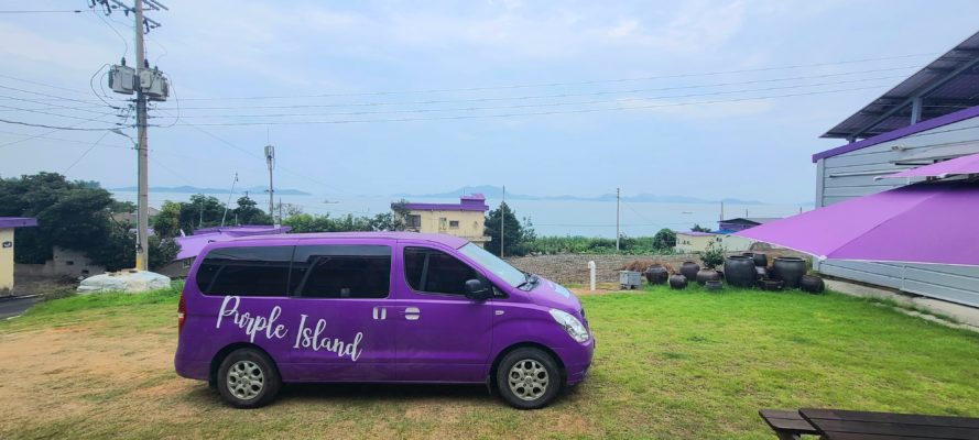 purple private van