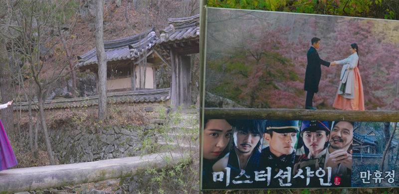 ms.sunshine online tour korea