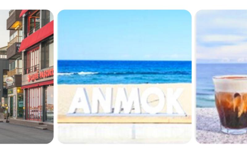 Anmok Beach Caffe Street in Gangneung