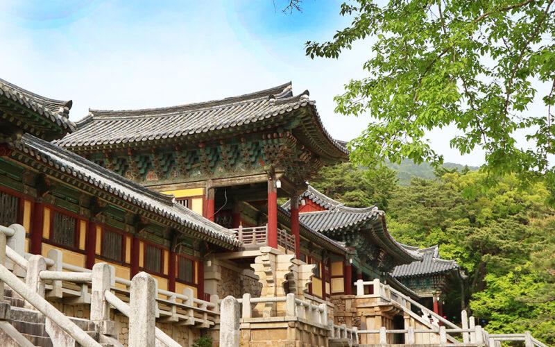 Gyeongju Live 7