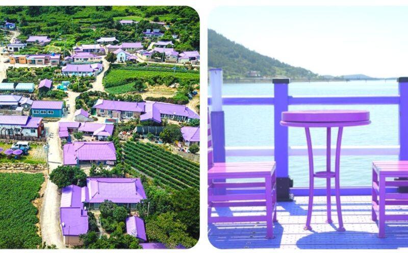 Tour08 purple island 1